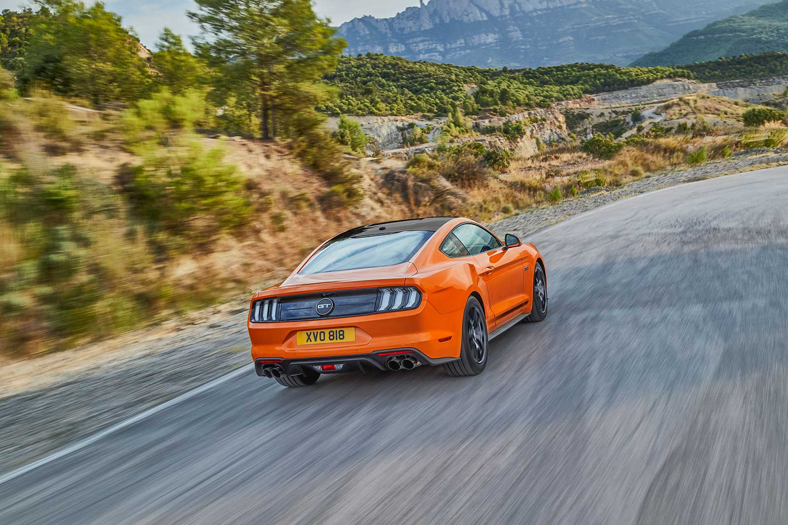 Mustang55
